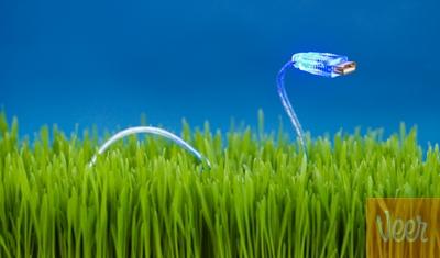 usb змея в траве