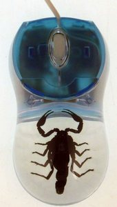 Computer Mouse With Real Scorpion – мышь с настоящим скорпионом